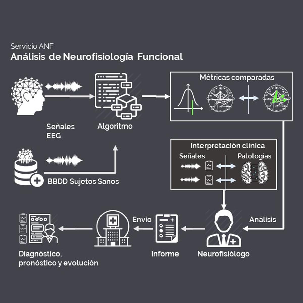 Esquema del Análisis de neurofisiología funcional
